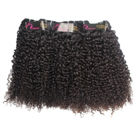DHL Shipping Wholesale virgin hair Jerry Curly 10pcs/lot
